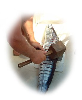 Steaking a King Mackerel